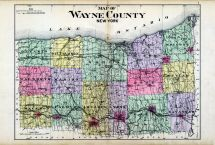 County Map, Wayne County 1904